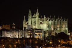 Catedral de Palma (David S.M.) Tags: noche mallorca palma ringexcellence
