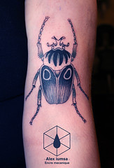 IMG_61962 (Alex iumsa) Tags: black tattoo insect grey dot tatouage goliathus