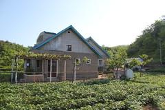 Homestay village home (Ray Cunningham) Tags: de kim north korea communism rpublique socialism core populaire dprk coreadelnorte ilsung demokratische  jongil   dmocratique jongun  rpdc volksrepublik   northkoreanphotography raycunninghamnorthkoreanphotography dprkphotography