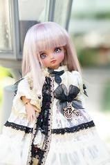 DSC01109 (zeky_afa) Tags: doll bjd roko ciaobella bambicrony