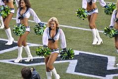 2013 Seahawks vs. Oakland Raiders (NBWaller) Tags: seattle football cheerleaders nfl seahawks seattleseahawks fans raiders seagals oaklandraiders nationalfootballleague centurylinkfield