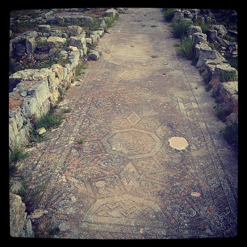 طريق مُزيّن بالفسيفساء في مدينة شحات الأثريه (قورينا) مازال جميل رغم العوامل البيئيه #شحات #قورينا #ليبيا #libya