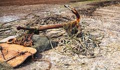 Beach Debris (Rachel Dunsdon) Tags: uk net beach debris rope anchor essex