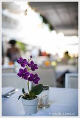 Wybrzeże Amalfi-79