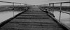 Noarlunga Jetty in a Storm #dailyshoot  #Adelaide (Leshaines123) Tags: light beach monochrome contrast canon photography photo flickr foto photographer jetty australia adelaide facebook noarlunga bestshots anawesomeshot dazzlingshot vividstriking leshaines