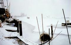 winter in holland (16) (bertknot) Tags: winter winterinholland denbommel
