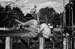 guris.... (mauroheinrich) Tags: costumes brasil gauchos ctg riograndedosul cultura pampa mtg tradicionalismo riogrande gaucho guri rodeio laço gaúcho tradição gaúchos gauchismo tradições peões ibirubá querência tirodelaço gurís laçadores 9ªrt mauroheinrich