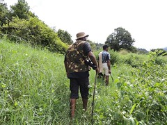 "Trekking • <a style=""font-size:0.8em;"" href=""http://www.flickr.com/photos/109145777@N03/10940803475/"" target=""_blank"">View on Flickr</a>"