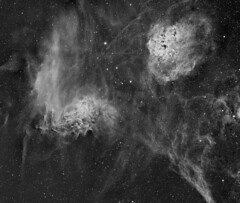 IC410 and IC405 (Tadpoles and Flaming Star nebula, Sh2-229, Caldwell 39) in mono (swag72 (www.swagastro.weebly.com)) Tags: stars star astro nebula astrophotography as