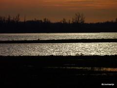 Sunrise (llovmaartje) Tags: sunrise landscape ganzen silhouet biesbosch landschap sfeer romantisch zonsopkomst noordwaard