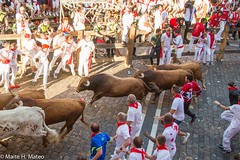 "6toros San Fermín Festival Pamplona 2013, Spain-5 <a style=""margin-left:10px; font-size:0.8em;"" href=""http://www.flickr.com/photos/116167095@N07/12268933046/"" target=""_blank"">@flickr</a>"