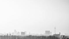 Dusseldorf, Germany. (HatemHamdi) Tags: bw germany deutschland nebel minimalism dsseldorf allemagne brouillard rheinturm