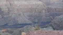 DSC06811 (jorgehevia2003) Tags: 2009 arizonausa viajelasvegas2013 grancanonarizona