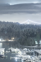 _DSC0117 (Chairman Ting) Tags: vancouver forest marina stanleypark lionsgatebridge westcoast coalharbour snowday winterwonderland nikkor85mmf14 snowatnight nikond90 ilovevancouver lionsgatebridgeatnight forestcoveredinsnow february2014 snowincoalharbour wintermarina