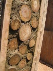 Wood wall_4630282307_l