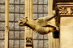The Cathedral Saint-tienne de Metz (atsjebosma) Tags: france cathedral details gargoyle frankrijk metz saintetienne atsjebosma waterspuger mygearandme