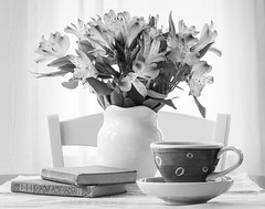 Still life in Black and White (dshoning) Tags: stilllife hmbt flowers cup books table chair window