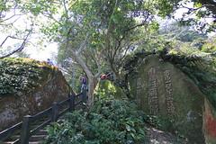 IMG_1324 (少東 兄) Tags: 爬山 福星 四獸山 虎山 獅山 豹山 象山 台北101