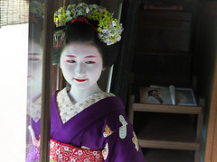 Maiko_20170306_24_60 (kyoto flower) Tags: tondaya fukuno kyoto maiko 20170306 舞妓 冨田屋 ふく乃 京都 hidekiishibashi