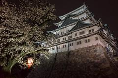 Nagoya Castle (kinpi3) Tags: 名古屋 japan nagoya night cityscape ricoh gr