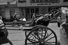 Kolkata cameo (Rajib Singha) Tags: travel street people portrait transport rickshaw outdoor bw monochrome walk interestingness flickriver nikond7200 kolkata westbengal india