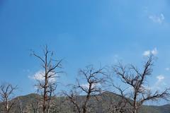 4Y4A4482 (francois f swanepoel) Tags: afwit afwitkalk arch architecture argitektuur beton calitzdorp concrete groenfontein groenfonteinvallei groenfonteinvalley kalk landscape landscapes landskap noordkaap northerncape scenics whitewash swartbergmountains swartberg
