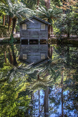 14/52: Reflecting... [Explored] (judi may) Tags: 100xthe2017edition 100x2017 image40100 52weekchallenge reflections reflection water trees hut alfrednicholasmemorialgardens gardens thedandenongs victoria australia canon7d sky lake