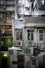 Density in Sheung Wan (monsieur I) Tags: asia abroad asian buildings density faraway hongkong hongkongbay hongkongisland housings monsieuri sheungwan travel traveler world