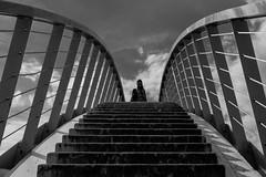 back down to earth (Eric Spies) Tags: brücke bridge nijmegen nimwegen clouds wolken silhouette silhouetten silhouettes monochrom monochrome mono sky himmel fujifilm fujinon fuji xt10 xc 1650 black white bw schwarzweiss kontrast kontraste contrast contrasts treppe stairs stairway wandelbrug brug ooijpoort ooypport ooij ooy ooijpolder ooypolder waal waalstrand niederlande skywalk skywalker skywalking netherlands nederland gelderland guelders einfarbig ooyseschependom street ooypoort