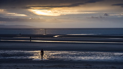 Sunset at Another Place on Crosby Sands (Joe Dunckley) Tags: anotherplace antonygormley crosby crosbysands england gwynedd irishsea lancashire liverpooldocks merseyside northwales snowdonia uk wales architecture beach building coast dock harbour sculpture sea sunset watchtower water