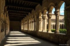 DSC6761 Claustro del Monasterio de Santa María la Real de Nieva, finales del siglo XIV y principios del siglo XV, (Segovia) (Ramón Muñoz - ARTE) Tags: monasterio de santa maría la real nieva claustro claustros