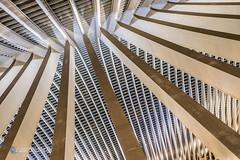 Sky-Lines (Carismarkus) Tags: bahnhof belgien centralstation eisenbahn hauptbahnhof liège liègeguillemins lüttich railway architektur linien abstrakt
