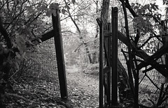 Gateway (Kristian Francke) Tags: film ae1 old camera gate garden bc canada british columbia october 2016 coquitlam abandoned ilford hp5 iso 400 clayton f76 canon fd 50mm f18