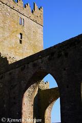 Tintern Abbey (Ken Meegan) Tags: tinternabbey saltmills cowexford ireland 742016