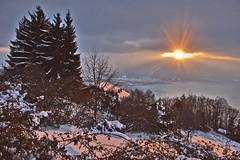 """Allons voir un coucher de soleil ..."" p. 26 .Winter Twilight Time. No. 6591. (Izakigur) Tags: alps alpes alpen alpi vd cantonvaud romandie swissromande swiss suiza suisia suizo suïssa photographer twilight twilighttime nikond700 nikkor2470f28 sunset sun sunst lepetitprince thelittleprince ilpiccoloprincipe fixyou coldplay switzerland svizzera time melancholy red orange trees rose lac lake water snow neige schnee dieschweiz d700 lacléman suíça myswitzerland musictomyeyes caux montreux"