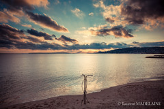 JUAN LES PINS 21 01 2016 (Laurent MADELAINE) Tags: orpi century21 immo