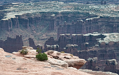 Grand View canyon overlook (Thankful!) Tags: canyon canyonlandsnationalpark desert rock cliff