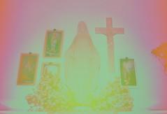 televised healings. (roadkill rabbit) Tags: catholic martyr symbols prayercards virginmary crucifix glowinthedark statues shrine
