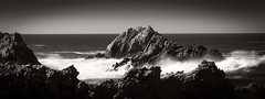 Bird Rock at Point Lobos