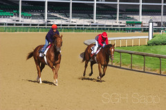 IMG_8315_01 (Sagrasa) Tags: churchilldowns kentucky horseracing thoroughbred