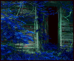 (Cliff Michaels) Tags: nikon photoshop pse9 old door colors country tennessee