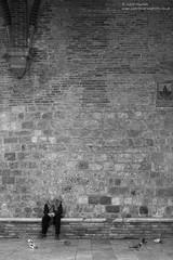 Patiently Waiting (Justin Haynes Photography) Tags: stone building wwwjustinhaynesphotocouk brick mono justinhaynesphotography sangimignano pigeons man tuscany d7100 afsnikkor2485mmf3545 handheld nikon zoomlens monochrome street italy