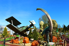 Plane crash among the Dinosaurs (Eddie Crutchley) Tags: europe england cheshire outdoor sunlight gardens plane dinosaur simplysuperb greatphotographers