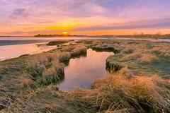 Broken mirror 碎鏡 (kaising_fung) Tags: marsh pool grass evening clouds sky sunset
