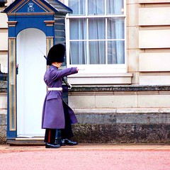 The queen's guard !! (omardjabi1) Tags: england palace photo picture nikon buckingham uniform guard photography photographer london uk
