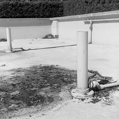Fountain (yotam.fogelman) Tags: analog film yashicad bw street toronto canada mediumformat 120 6x6 fujifilm neopan acros100