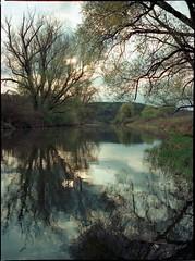 (brouillard23) Tags: river rivière râu folyó m645 mamiya
