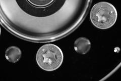 A HDD's spindle (Pascal Volk) Tags: festplatte harddiskdrive spindle spindel schrauben screws torx t7 hdd artinbw schwarz weis black white blackandwhite schwarzweis sw bw bnw macro makro 210mm closeup nahaufnahme macrodreams bokeh dof depthoffield canoneos6d sigma105mmf28exdgoshsmmacro sigmaapoteleconverter2xexdg