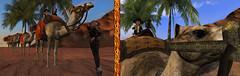 Queen of the caravan (Teddi Beres) Tags: second life sl treasure adventure camel caravan desert dunes palm tree sand sunlight exotic danger mystery girl explorer