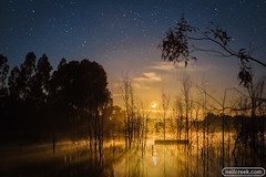 Misty Moonrise (neilcreek) Tags: moon space moonrise landscape beautiful night nightsky mysterious magical stars universe cosomos trees water lake reflection mist misty morning midnight yellow quarter startrails trails clouds peaceful eppalock australia travel